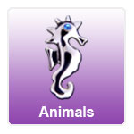 Screwbidoo Animals