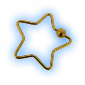 Gold Plated Star BCR Ring