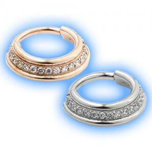 Staggered hinged jewelled segment ring