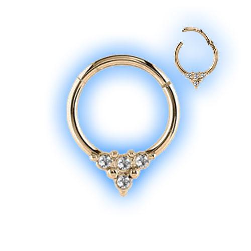 Gold PVD Multi Gem Decorative Hinged Segment Ring