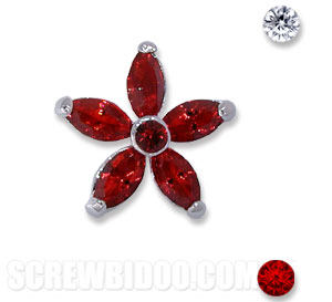 Screwbidoo Screw - 6 Stone Flower