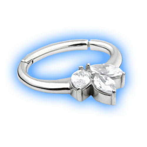Hinged segment Ring with cluster design