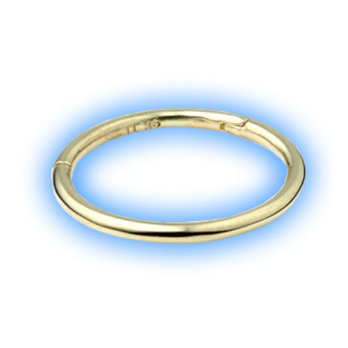Gold Conch Ring