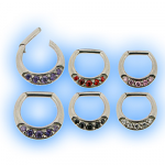 Jewelled Hinged Septum Segment Ring
