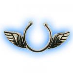 Angel Wings Fake Nipple Shield