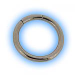 Surgical Steel Large Gauge Segment Ring