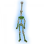 Halloween Glow Skeleton Belly Bar