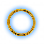 Gold Plated Steel Segment Rings